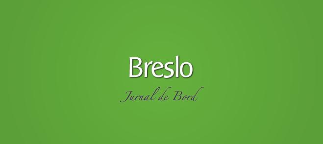 Statistici Breslo: Jurnal de Bord, Februarie 2011