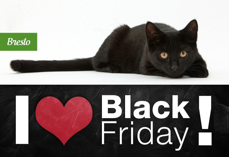 black-friday-2014-breslo-760x521
